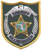 POLICE/FLORIDACOUNTY/HILLSBOROUGHCOFLSHERIFFUSEDTMB.jpg