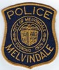 POLICE/MICHIGAN/MELVINDALEMIPOLICEUSEDTMB.jpg