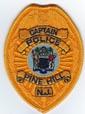 POLICE/NEWJERSEY/PINEHILLNJPOLICECAPTAINBADGEPATCHTMB.jpg
