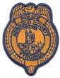 POLICE/VIRGINIA/HENRICOCOVAPOLICEBADGEPATCHGOLDTMB.jpg